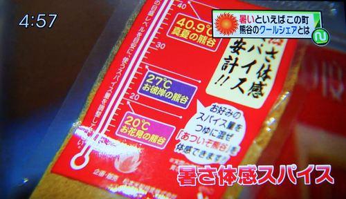 DSC05290_R.JPG